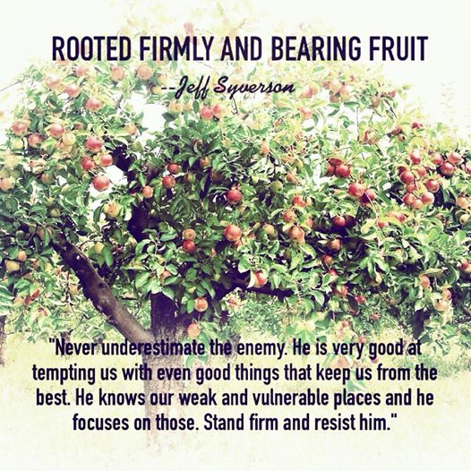RootedFirmly