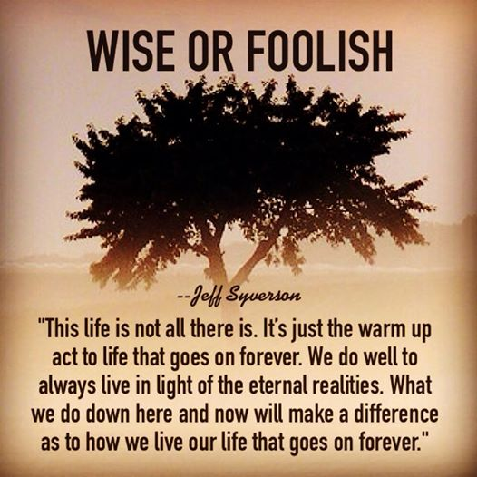 wiseorfoolish