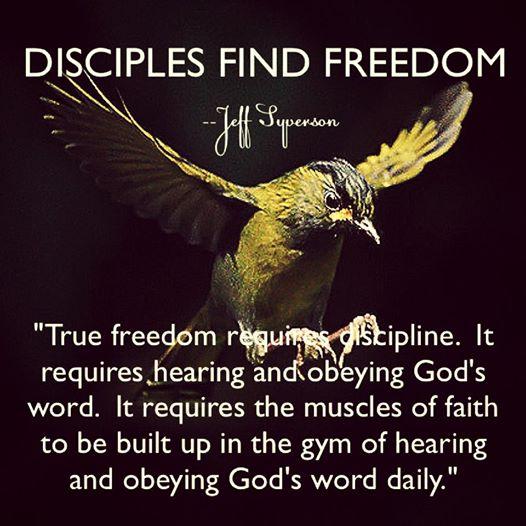 disciplesfindfreedom