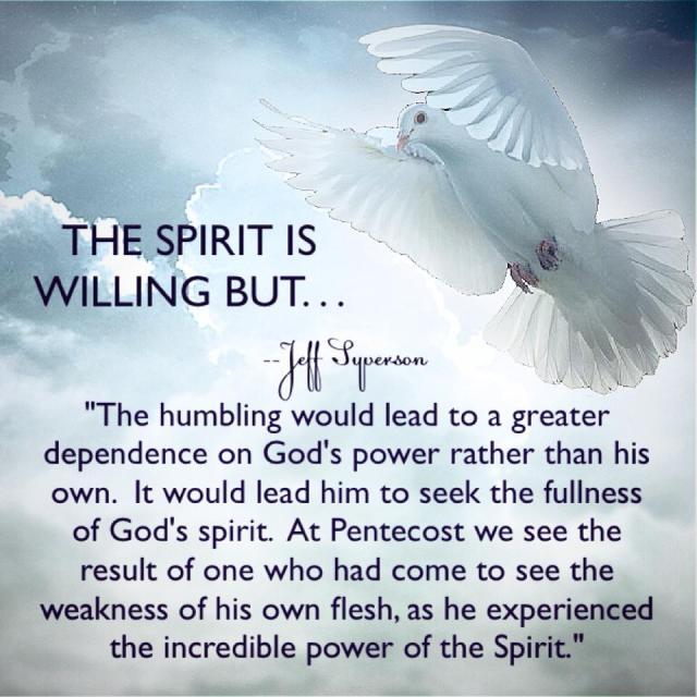 spiritiswillingbut
