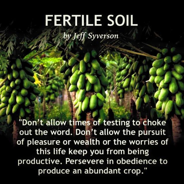 fertilesoil2