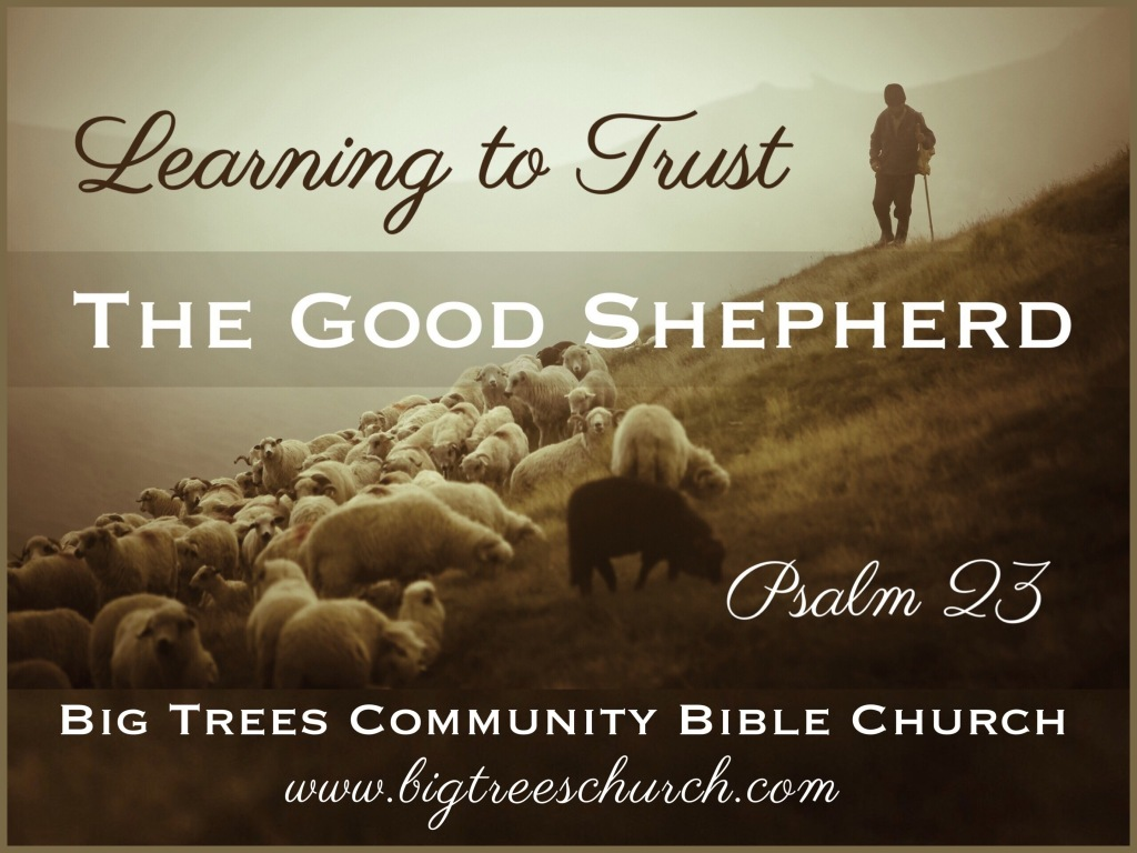 Learning to Trust the Good Shepherd